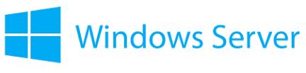 Windows Server Icon